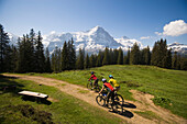 Three people riding mountain bikes at Bussalp (1800 m), view to Eiger North Face (3970 m), Grindelwald, Bernese Oberland (highlands), Canton of Bern, Switzerland
