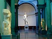 David, sculptor Michealangelo, Original Galleria del´Academia, Florence, Tuscany, Italy