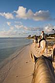 Ritt am Strand, Aruba, ABC-Inseln, Niederländische Antillen, Karibik
