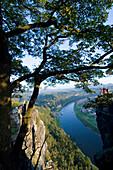 View over Elbe River, Bastei, Elbe Sandstone Mountains, Saxon Switzerland, Saxony, Germany