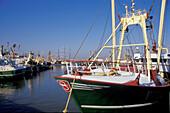 Harlingen, harbour, Netherlands, Europe