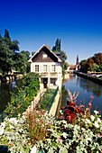 House at anabranch of Ill river, La Petite France, Strasbourg, Alsace, France, Europe