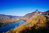 Castle ruin of Metternich at Moselle river, Rhineland-Palatinate, Germany, Europe