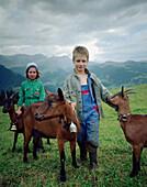 Children guarding goats, over Simmenvallley, near Lenk, Berner  Alpen, Kanton Bern, Switzerland Alpen, Kanton Bern, Switzerland