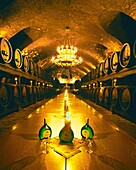 Wine cellar of Residence, Wuerzburg, Germany