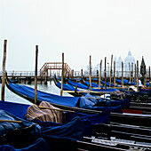gondolas in Venice, Italy, harbour, embarkation point, water, transport, transportation, taxi, sightseeing, landmark, tourism, tourists, typical, culture, travel, journey, source of income