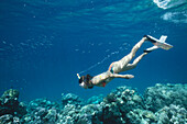 Person snorkeling under water, Havelock Islands, Andaman Islands, India