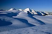 wide field of glaciers beneath Weißkugel, Ötztal range, Tyrol, Austria