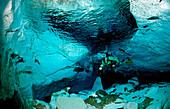 Unterwasserhoehle Cueva Taina, Punta Cana, Suesswasser, Dominikanische Republik