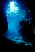 Unterwasserhoehle Los Islotes, Mexiko, Cortezsee, Niederkalifornien, La Paz