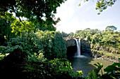 USA, Hawaii, Big Island, Rainbow Falls, Hilo, nature, water, idyll, Lake