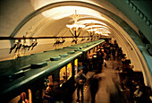 Moscow underground station, Moscow, Russia