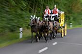 Stage coach, horse carriage, Near Bad Kissingen, Rhoen, Bavaria, Germany