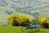 Countryside in Crete Senesi, Tuscany, Italy