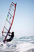 Windsurfer on waves, Kos Island, Dodecanese, Greece