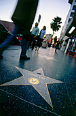 Hollywood Walk of Fame, Hollywood, L.A., Los Angeles, California, USA