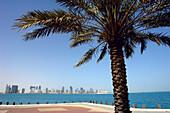 Doha Bay, Doha, Qatar