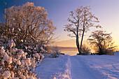Snow covered landscape at Lake Chiem, Urfahrn near Breitbrunn, Chiemgau, Bavaria, Germany