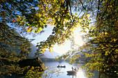 Rowing boats on Lake Hinter, Ramsau, Berchtesgaden National Park, Bavaria, Germany