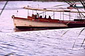 Typical boat on the river Chao Phraya, Bangkok, Thailand, Asia