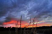 Rain clouds in sunset, Bavaria, Germany