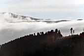 Morning Haze in Autumn, Kinzig Valley, Black Forest, Baden Wuerttemberg, Deutschland, Europe