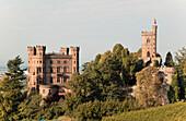 Ortenberg Castle near Offenburg, Black Forest, Baden-Wuerttemberg, Germany