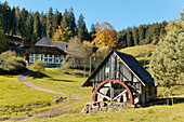 Historical Black Forest Mill and Farmhouse in Autumn, Windkapf Mountain, historical Building, Black Forest, Germany