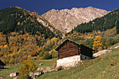 Mountain village, Sciora Range, Bergell, Soglio, Grisons, Switzerland