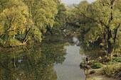 Angler an der Donau, Regensburg, Oberpfalz, Bayern, Deutschland