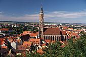 Türme und Dächer der mittelalterlichen Altstadt um den Backsteinturm der Kirche Sankt Martin, Landshut, Niederbayern, Bayern, Deutschland