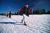 A group of people cross country skiing over the Plateau, Filipova Hut, Sumava, Bohemian Forest, Czech Republik