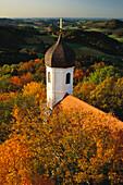 Zwiebelturm der Burgkapelle von Burg Falkenstein vor herbstlich bewaldeten Hügeln, Falkenstein, Bayerischer Wald, Oberpfalz, Bayern, Deutschland