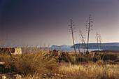 Coastal landscape La Meseta, Agua Amarga, Parque Natural Cabo de Gata, Andalusia, Spain