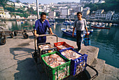 Two fishermen presenting baskets full of octopuses on the quay of Luarca's boat harbour, Asturias, Costa Verde, Bay of Biscay, Northern Spain