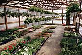 Roadside produce and flower market near Denton, Maryland. USA.