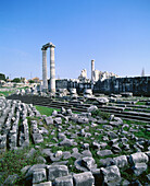 Temple of Apollo, ruins of the old Greek sanctuary of Didyma. Turkey