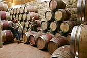 Visitors at winery, Bodegas Miguel Merino, La Rioja, Spain