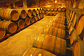 David Moreno wine cellar. Badarán. La Rioja. Spain