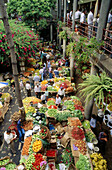 Market. Funchal. Madeira Island. Portugal.