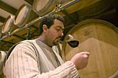 Tenuta Bonzara Wine Producer, the winecellar. Monte San Pietro, Bologna , Italy.