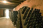 Contadi Castaldi wine producer. Adro (Brescia), Lombardy, Italy.