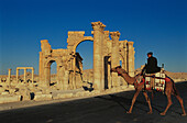 Camel in front of ruins of the old Greco-roman city of Palmira. Syria