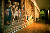 Tapestries on walls, galleries of Palazzo Farnese. Rome. Italy