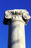 Ionic capital, ruins of old Paphos. Cyprus
