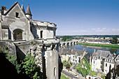 Château Amboise and Loire River. Val-de-Loire. France