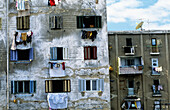 Crippled multistorey housing. Alexandria. Egypt
