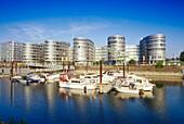 Office buildings Five Boats, marina in foreground, basin, Duisburg, North Rhine-Westphalia, Germany