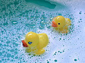 Bathtub, Bathtubs, Childhood, Color, Colour, Contemporary, Duck, Ducks, Float, Floating, Foam, Foamy, Froth, Horizontal, Hygiene, Infantile, Innocence, Innocent, Lather, Object, Objects, Pair, Rubber duck, Soap, Suds, Thing, Things, Two, Two items, Water