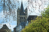 North-Westphalia, Cologne, (Germany). Springtime view of Gross St. Martin, the most prominent of Cologne s Romanesque churches.